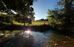 Взгляд летнего времени реки Alyn в северном вэльсе Стоковая Фотография