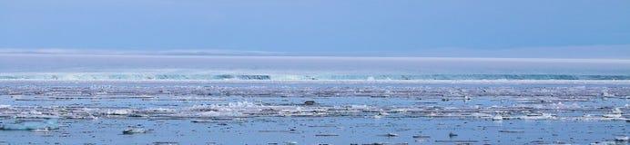 Взгляд ледовитого ландшафта Стоковые Фото