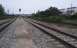 Взгляд железной дороги с зеленым деревом на стороне железной дороги, движении lright железной дороги, фильтровал изображение, сел Стоковые Изображения