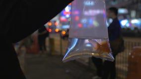 Взгляд замедленного движения руки женщины держит пластичный пакет с рыбами золота и идти в торговый центр фарфор Hong Kong акции видеоматериалы