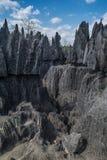 Взгляд заповедника Bemaraha tsingy Стоковые Изображения RF