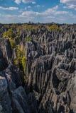 Взгляд заповедника Bemaraha tsingy Стоковое Изображение RF