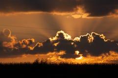 Взгляд захода солнца над кукурузным полем Стоковые Фотографии RF
