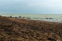 Взгляд залива с песчаным пляжем на пасмурный день Стоковые Фотографии RF
