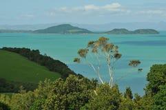 Взгляд залива Hauraki Стоковое Изображение