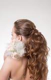 взгляд задних красивейших волос длинний волнистый задний взгляд Стоковое Изображение
