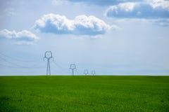 Взгляд зеленого поля молодого зерна с опорой линии электропередач под голубым небом стоковые изображения rf