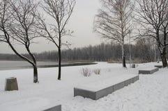 Взгляд зимы озера побережья Pogoria стоковая фотография rf