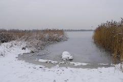 Взгляд зимы озера побережья Pogoria стоковое изображение rf