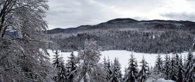 Взгляд зимы покрытого снег плато стоковые изображения rf