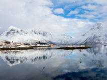 Взгляд зимы фьорда Austnes, островов Lofoten, Норвегии Стоковые Изображения RF