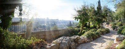 Взгляд Иерусалима от держателя оливок Стоковые Изображения