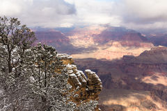 взгляд каньона грандиозный Стоковая Фотография RF