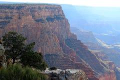 взгляд каньона грандиозный Стоковые Изображения