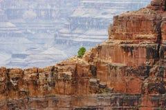 взгляд каньона грандиозный Стоковое Изображение RF
