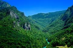 Взгляд каньона Тары, Черногории Стоковые Изображения