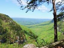 Взгляд каньона Cloudland сценарный Стоковые Фотографии RF
