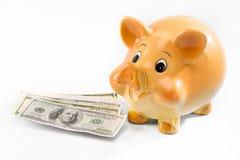 Взгляд конца-вверх банкнот копилки и доллара Стоковое фото RF