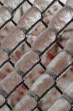 Взгляд конца-вверх ледистого плетения Стоковая Фотография RF