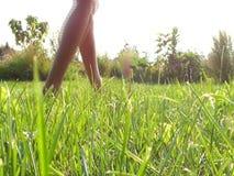 Взгляд конца-вверх женских ног идя на зеленое поле в лете акции видеоматериалы
