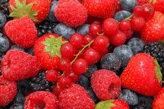 Взгляд конца-вверх на куче различных ягод с водой падает Стоковое Изображение