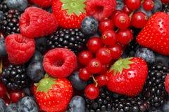 Взгляд конца-вверх на куче различных ягод Стоковые Изображения