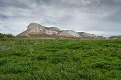 Взгляд красной горы, или голова ` s конематки, горы мела в долине Дона, парке Donskoy Стоковое Фото