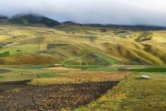 Взгляд красочных полей террасы Стоковое фото RF