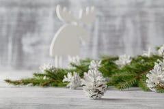 Взгляд крупного плана горизонтальный большого конуса сосны, отдыхая в белом снеге Стоковые Фото