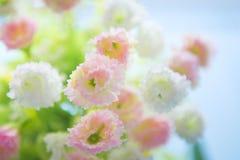 Взгляд крупного плана красивой свежей мягкой розы пинка букета Стоковая Фотография RF
