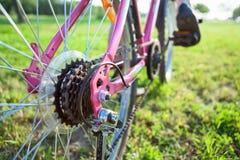 Взгляд крупного плана цепного колеса велосипеда на заднем колесе Стоковые Фото
