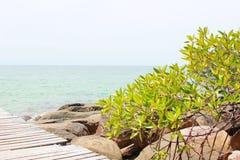Взгляд курорта на пляже Стоковая Фотография RF