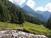 Взгляд к горе tribulaun, южный Тироль, Италия, Европа Стоковые Изображения