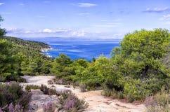 Взгляд к морю от верхней части холма, в Sithonia, Греция Стоковые Изображения