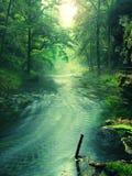 Взгляд к потоку горы под зелеными листьями акаций, буков и дубов Уровень воды делает зеленые отражения Начало summ стоковая фотография