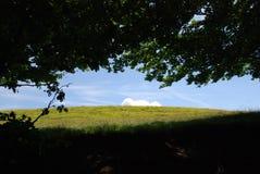Взгляд к полям в Италии стоковые изображения rf