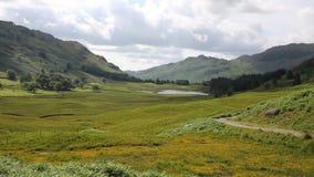 Взгляд к району Cumbria Англии Великобритании озера Blea Тарн сток-видео