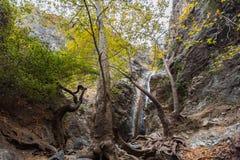 Взгляд малого водопада в горах troodos в Кипре Стоковые Фотографии RF