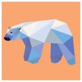 взгляд медведя приполюсный Стоковое фото RF