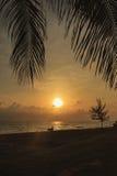 Взгляд моря и неба в утре которое имеет некоторого парня и его воюя быка Стоковые Изображения