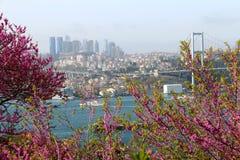 Взгляд моста Стамбула и Босфора Стоковая Фотография RF