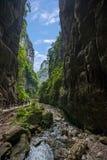Взгляд моста Чунцина Wulong естественный Стоковая Фотография RF