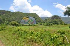 Взгляд настенной росписи Кубы Стоковое Изображение