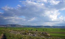 взгляд национального парка гор kazakhstan ile alatau красивейший Стоковое Фото