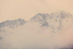 взгляд на высоких снежных горах Стоковые Изображения