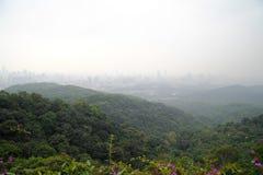 Взгляд на городе Гуанчжоу Стоковое Изображение