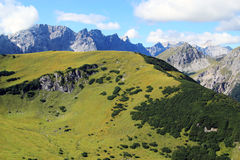 Взгляд на зеленой стороне горы в горах karwendel в горных вершинах Стоковые Изображения