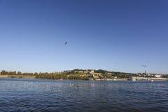 Взгляд на крепости и Реке Сава Белграда от другой стороны Стоковые Фотографии RF