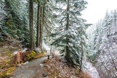 Взгляд на мосте, сценарный взгляд Narada попадает на день снега в mt более ненастном Стоковая Фотография