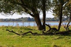 Взгляд над озером Brokholm в Salling, Дании Стоковое Изображение